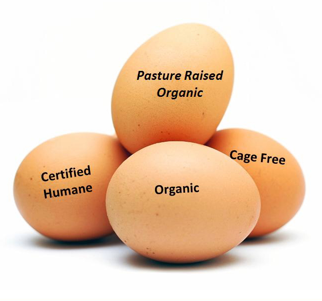 eggs-labeled1